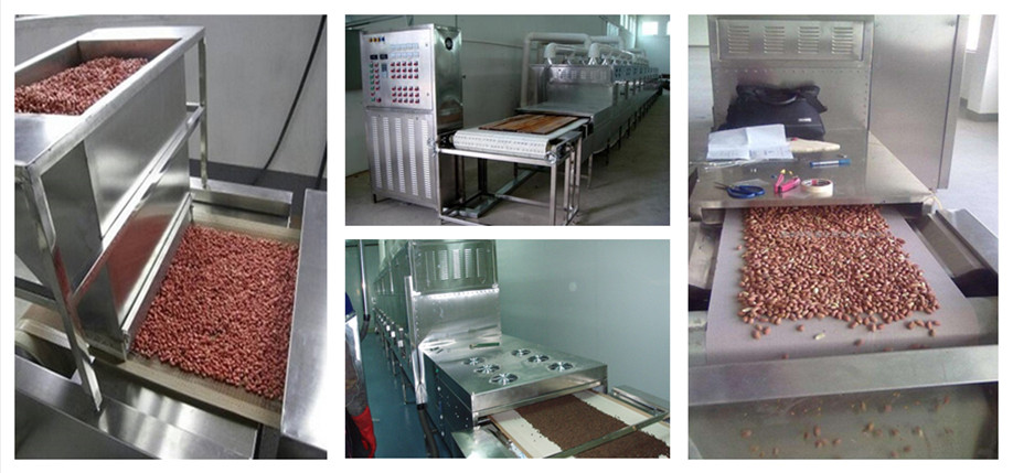 Jinan Macadamia nuts in shell|hot sell products Seafood dryer sterilizer conveyor microwave dryer machine for fish