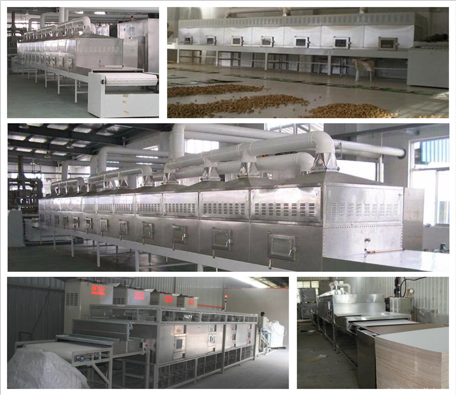 Industrial microwave fish drying machine / dried fish machine