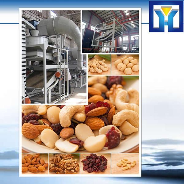 Walnut,Sesame,Olive Oil Hydraulic Press Machine Price #1 image
